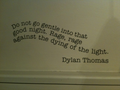 Do not go gentle into that good night essay